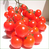 Cherry Tomato Seeds. Even if you have limited space or need tomatoes for growing in containers, our Cherry Tomato seeds are the perfect choice for your tomato needs. This season we are offering an outstanding selection of cherry tomato seeds, pear tomato seeds, grape tomato seeds and plum tomato seeds that are ideal for growing in containers.