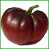 Shop online for our highly sought after black tomato seeds from Tasty Tomatoes.  Black Tomatoes are a long time specialty of ours and we stock only the finest black tomato seeds for your tomato growing needs.  Our black tomatoes produce good yields of stunning, tasty tomatoes that are bursting with  rich, earthy tomato taste!